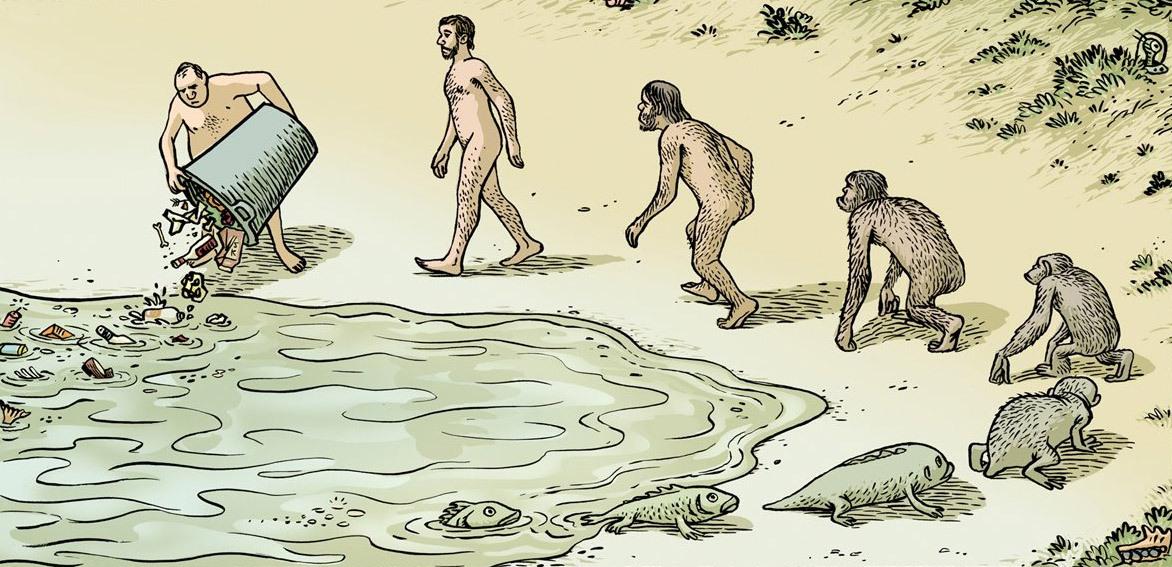 Эволюция в картинках для детей, ребенка
