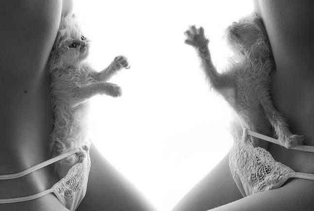 Фотоприколы женские киски так